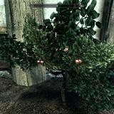 More growable plants xb1 skyrim xbox one mods bethesda mods skyrim mightylinksfo